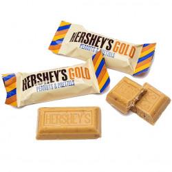 Hershey's Gold Peanuts & Pretzels 10g