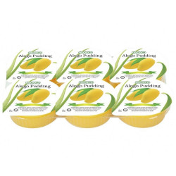 Cocon Pudding Aloe Vera 6 Pack