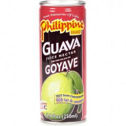 Philippine Guava Juice Drink