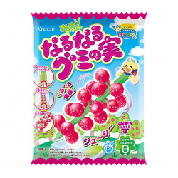 Kracie Popin Cookin DIY Naru Naru Gummy No Mi Grape