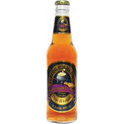 Flying Cauldron Harry Potter Butterscotch Beer
