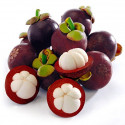 Foco Mangosteen Juice Drink