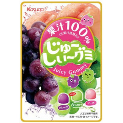 Kasugai Juicy Gummy Candy